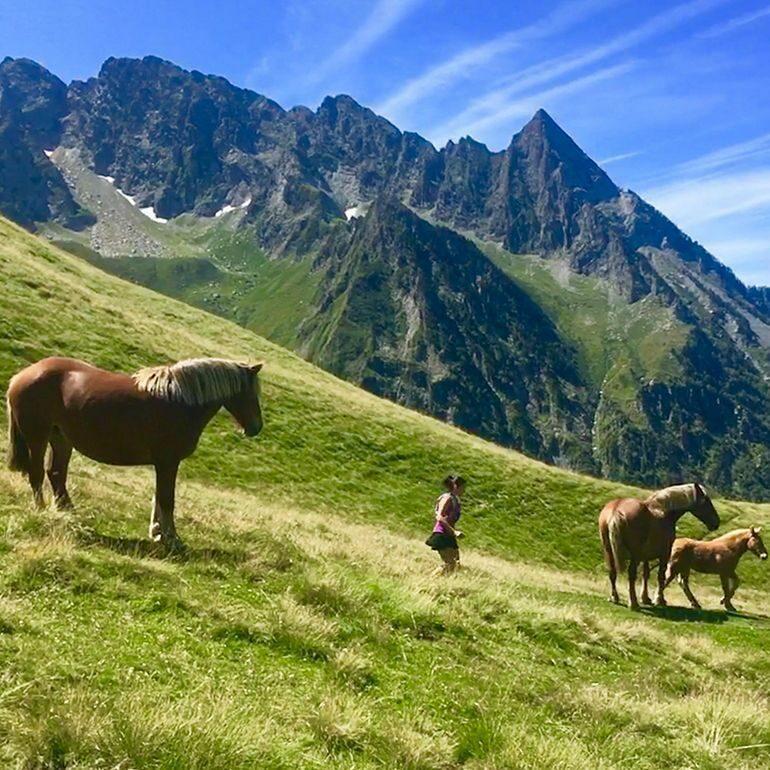 Trail Hospice de France