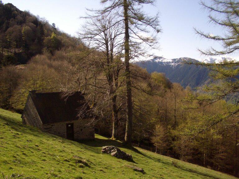 Cabane du Col d'Artigascou-Traces d'ours