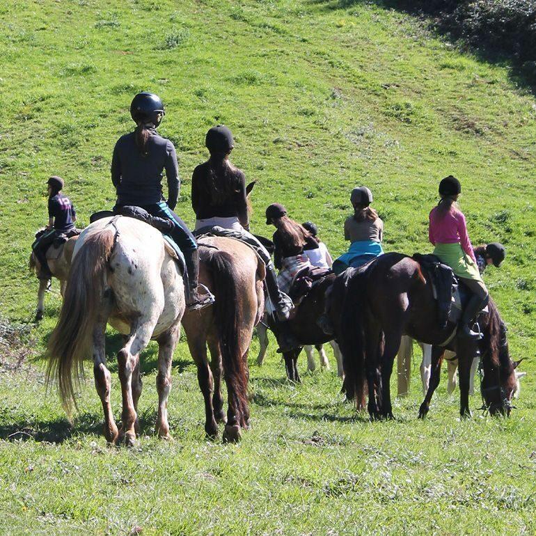 Groupe en balade à cheval