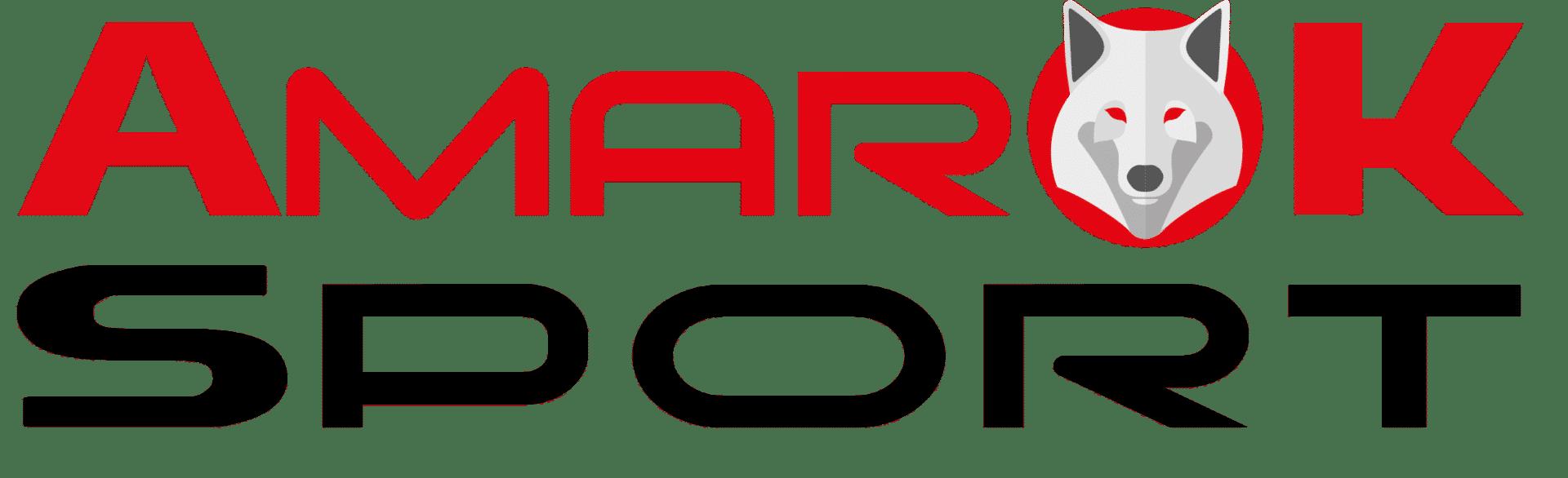 LOGO AMAROK RIDE 2