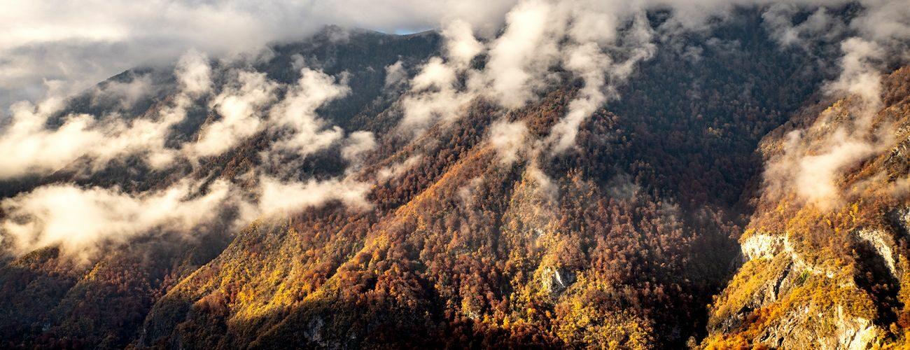 La montagne 4 saisons