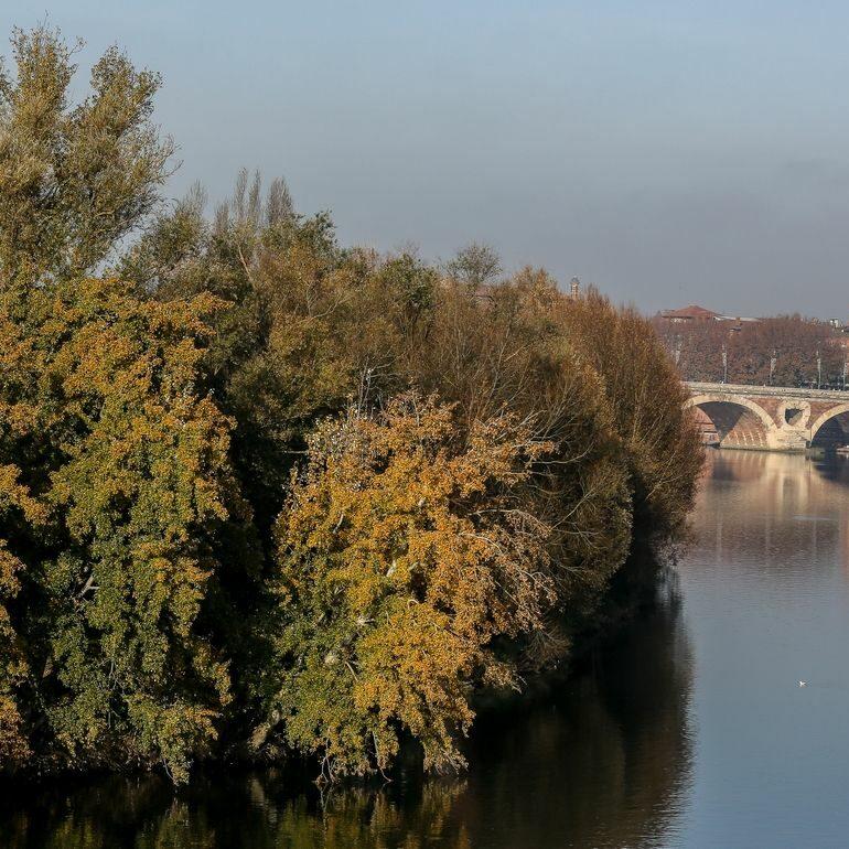 Toulouse en automne