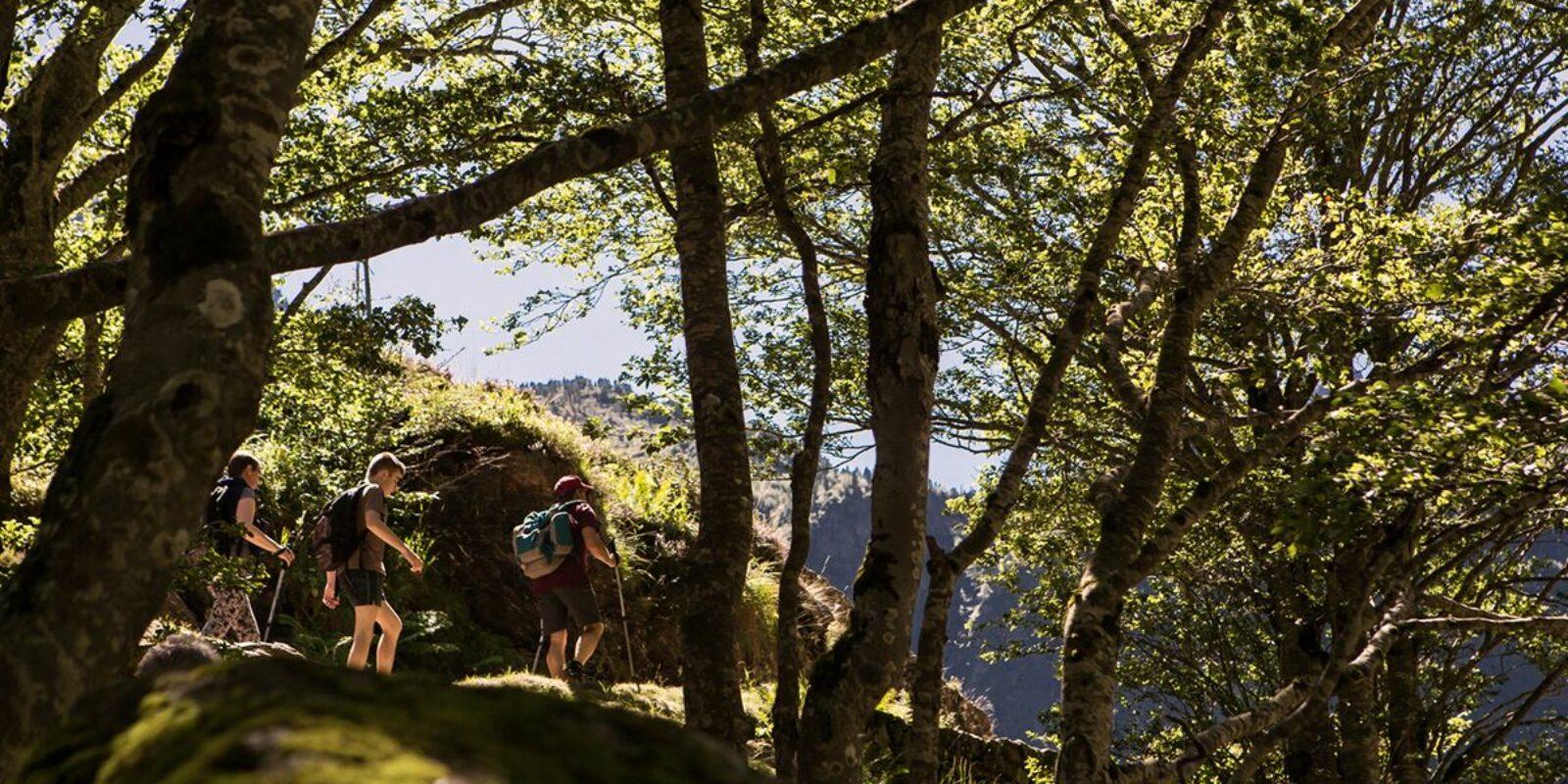 Randonnées Nature en Haute-Garonne