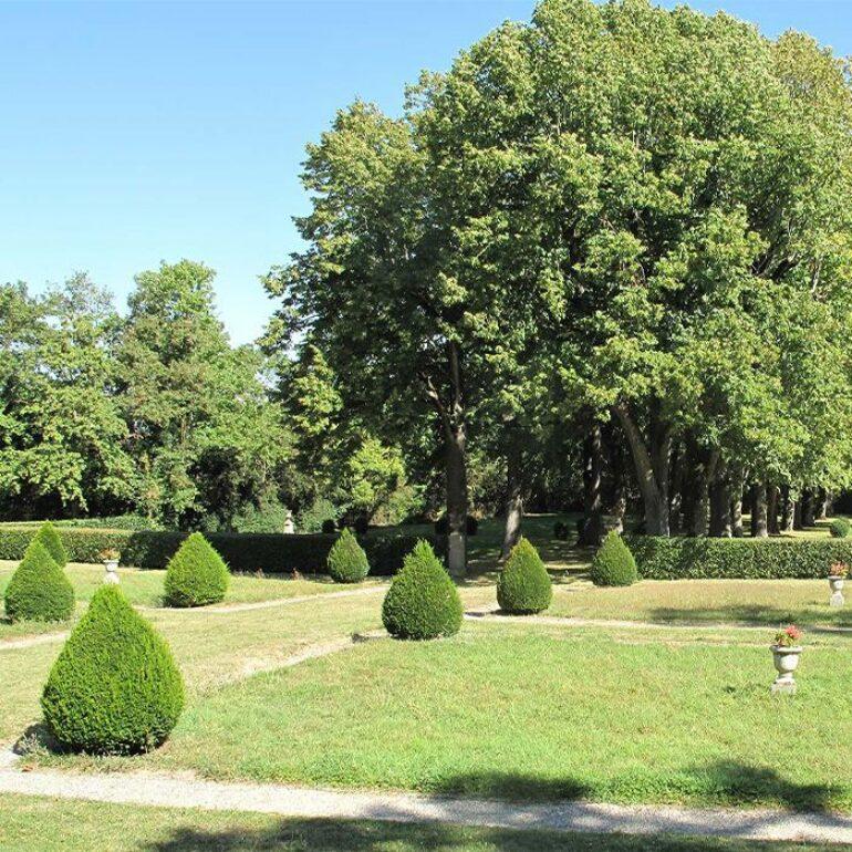 Allées des tileuls- Château de Loubens