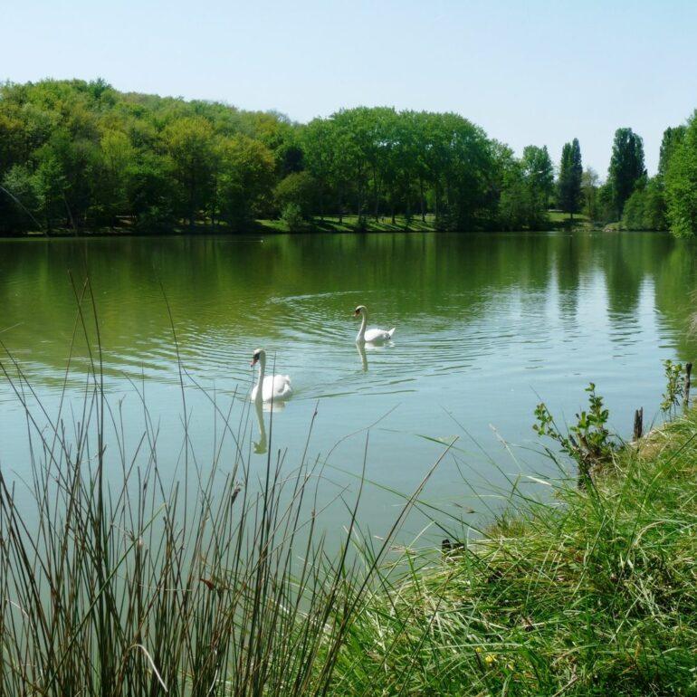 Lac-de-Boulogne